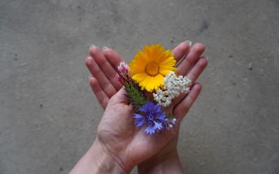 Pflegende Angehörige: Das tragende Fundament der Pflege